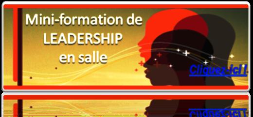 MINI-FORMATION DE LEADERSHIP EN SALLE-